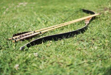 7 Best Bows